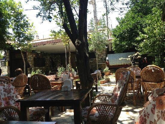Boomerang Guesthouse & Restaurant : 傍晚会更舒服