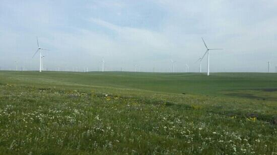 Huitengxile Grassland: 锡腾辉勒草原