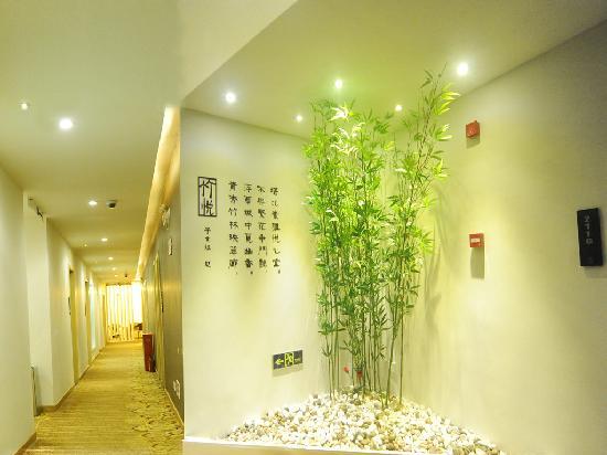 Taver New Hotel: 竹景