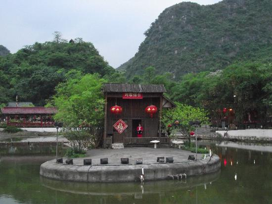 Liu Sanjie Landscape Garden of Guilin: 榕树