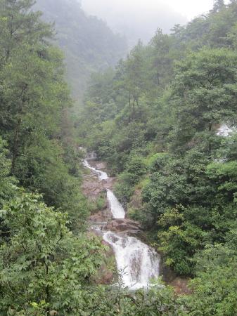 Dajishan National Forest Park: 大奇山国家森林公园