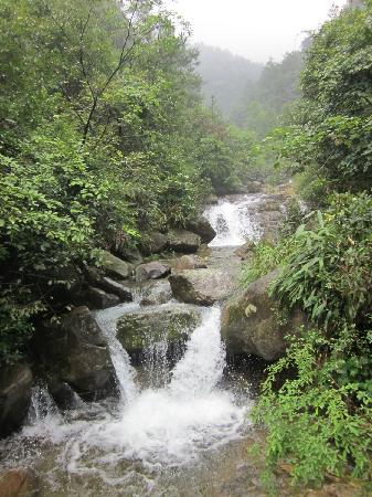 Dajishan National Forest Park