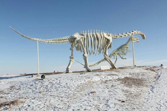 Erenhot, China: 通古尔恐龙墓地