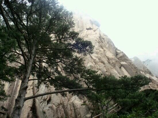 Wanxian Mountain: 万仙山