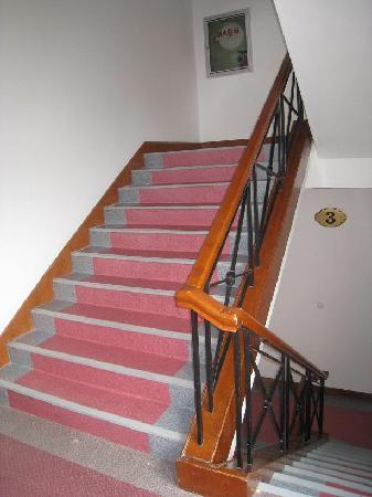 Qiandao Jinri Hotel: 楼梯