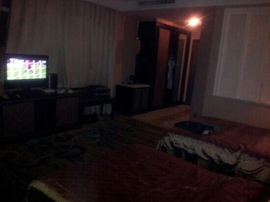 Danube International Hotel: 双床房