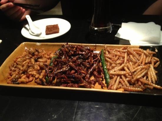Southern Barbarian: 昆虫宴