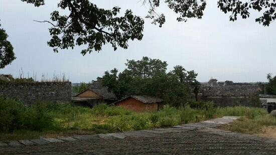 Anyi County, Chiny: 古樟