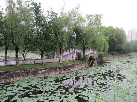 Suzhou Park: 苏州公园