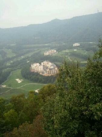 Big Shield Forest Park: 山顶高尔夫景