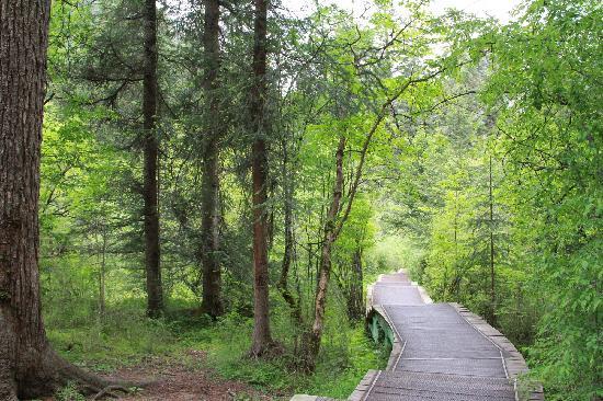 Zaru Horse Road : 步行栈道
