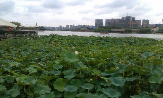 Shaanxi, China: 寒窑遗址公园