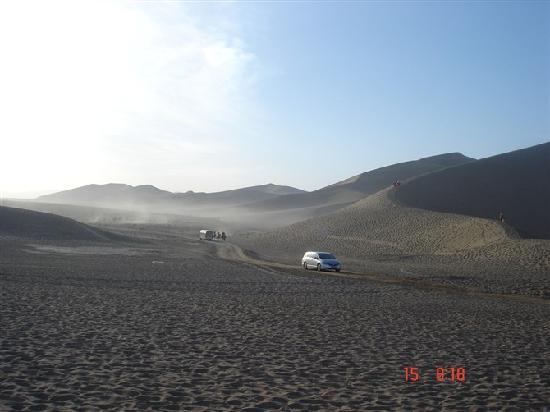 Silk Road : 沙漠中行走