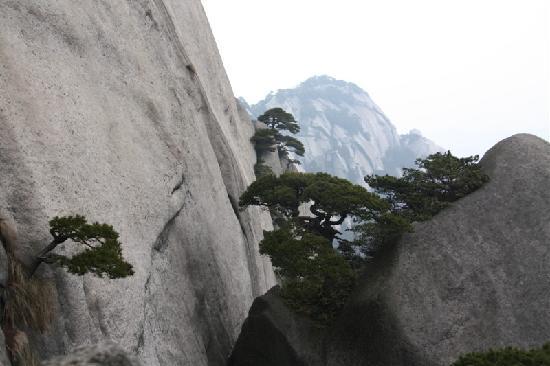 Tianzhu Shan(Tianzhu Mountain): 石头