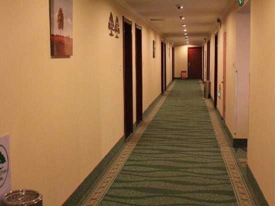 GreenTree Inn Bozhou Weiwu Road Business Hotel: 走廊