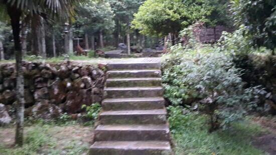 Songyang County, China: 箬寮山庄旁通向小木屋