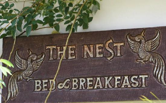 The Nest Hotel: The Nest Chiangmai
