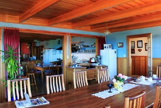 Hanlon House: 厨房