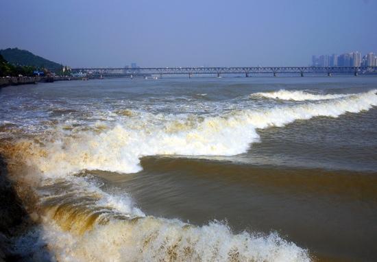 Qiantang Tide : 吓人