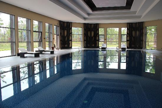 Shuguang Bozun Hotel: 游泳池