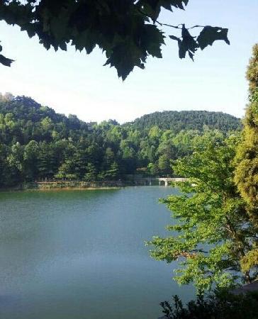 Lushan Scenic Resort: 庐山