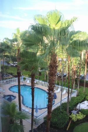 Fairfield Inn Orlando Airport: 泳池