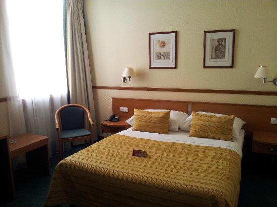 Adria Hotel Prague: 大床房