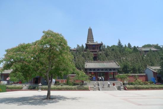 Pujiu Temple: 寺庙