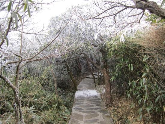 Leigongshan Mountain : 苗岭主峰