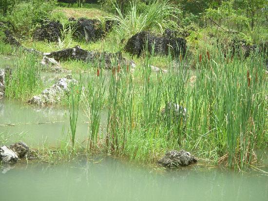 Libo Daxiao Hole Scenic Resort: shi di yuan