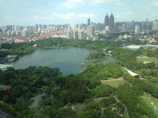 JW Marriott Hotel Shanghai Changfeng Park : 行政房望出去的长风公园