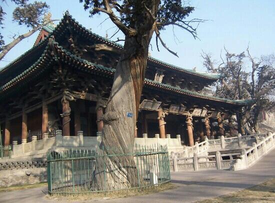 Jinci Museum: 晋祠博物馆