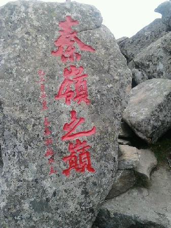 Zhuque Forest Park : 朱雀森林公园