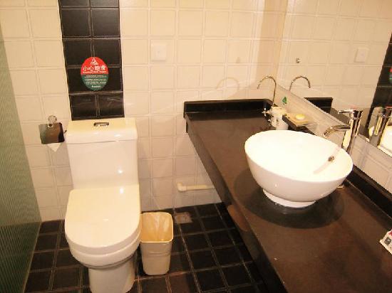 GreenTree Inn Qian'an Caifu Center Business Hotel: 厕所