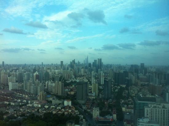 Renaissance Shanghai Zhongshan Park Hotel: 龙之梦万丽客房外景色