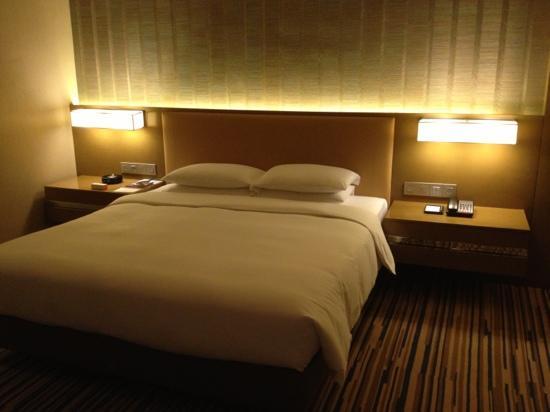 Hyatt Regency Chongqing Hotel : 目前重庆最佳酒店!