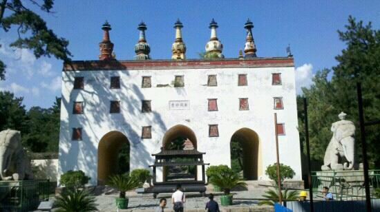 Potala Palace (Putuo Zongcheng Temple): 很雄伟