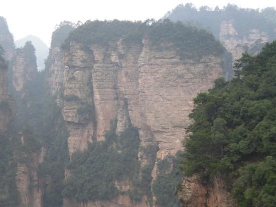 Jinyun Mountain: 山