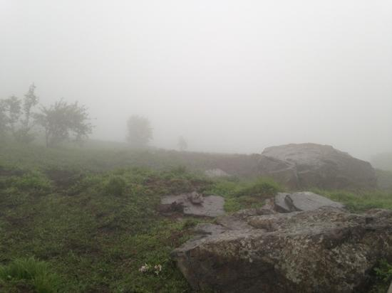 Chongqing Hei Mountain : 重庆黑山