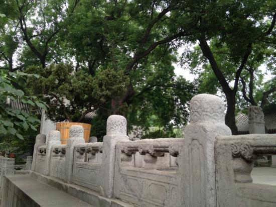 Beijing Guangji Temple: 内院