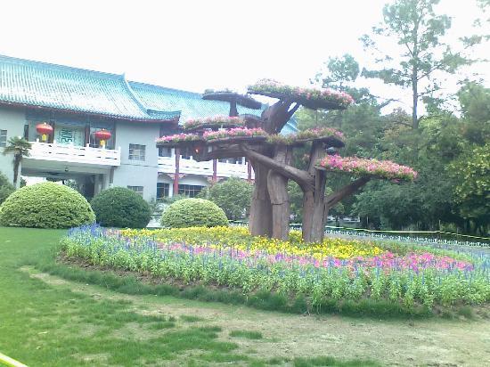 Wuhan Botanical Garden : 植物园进大门看到