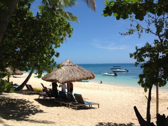 Castaway Island Day Trip: 惬意的小岛生活