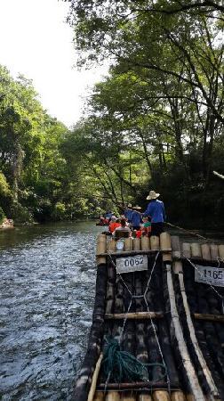 Jiuqu Stream in Wuyishan Mountain : 九曲溪下游
