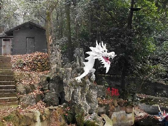 东台山 - 湘郷、东台山国家森林...
