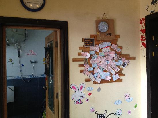 Dozycat Youth Hostel: 可爱的懒猫