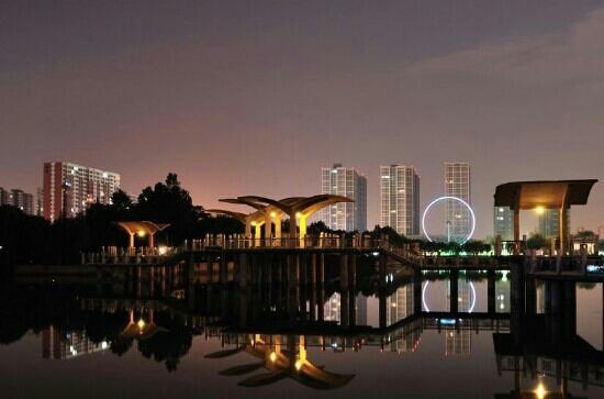 Water park of Shijiazhuang : 夜景