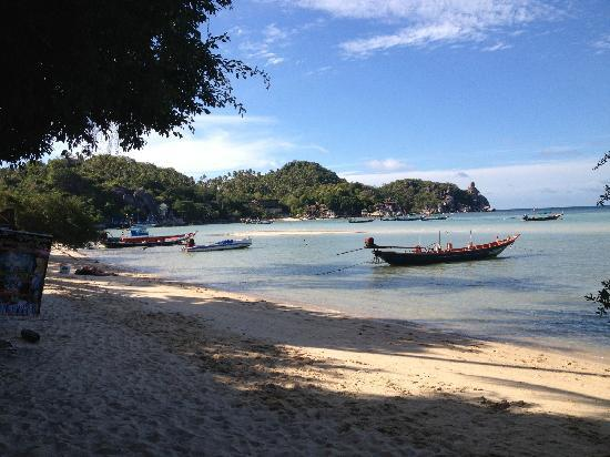 Koh Tao Tropicana Resort: du