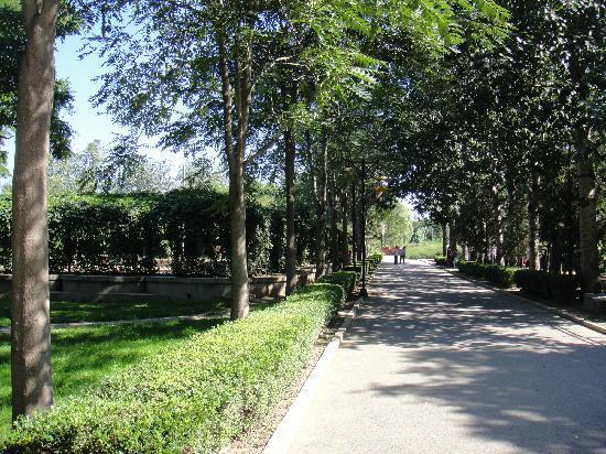 Tongzhou Xihaizi Park : 主道
