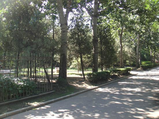 Tongzhou Xihaizi Park : 小道很舒服