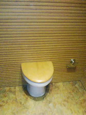Yu Hotspring Resort: 电梯内一景